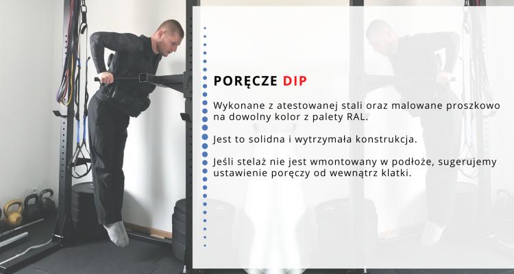 DIP 1